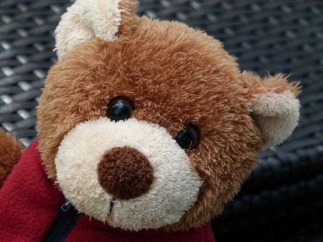 teddy-181572_640.jpg