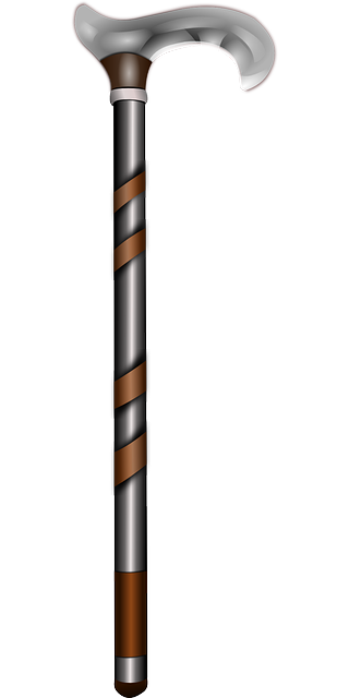 walking-stick-159542_640.png